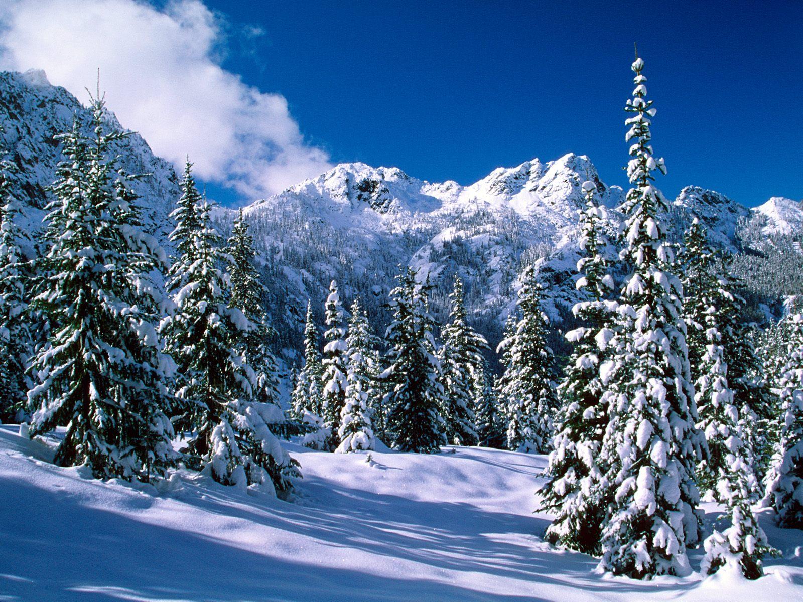 Ru природа красивые зимние пейзажи