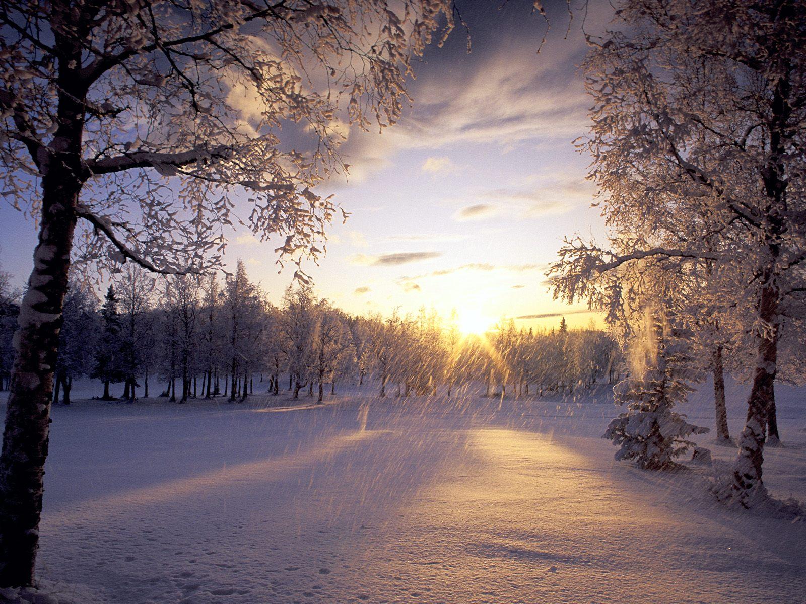 Анимация природа зима