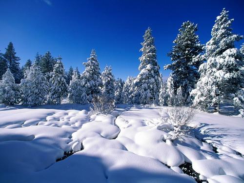 На рабочий стол зимний пейзаж фото 0
