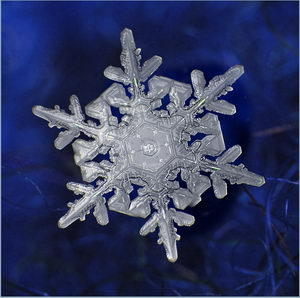 Макромир снежинки