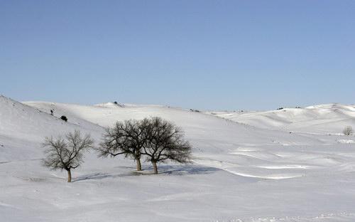 Начиная...  Что-то со снегом в этом году в столице не клеится.  Вид грязных улиц еще...