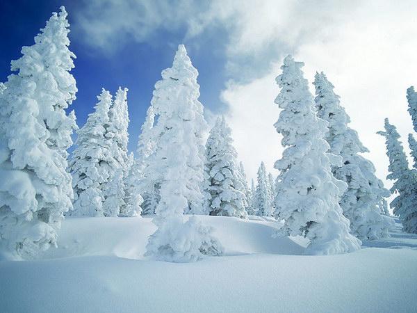 Фотографии природы :: Красивые зимние пейзажи фото 0