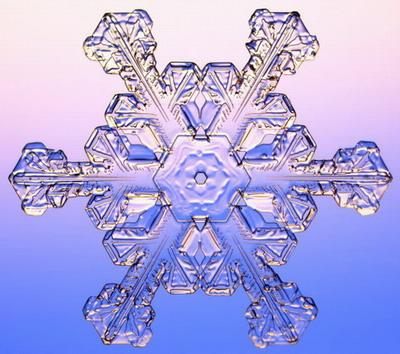 Макромир :: Снежинки под микроскопом фото 2