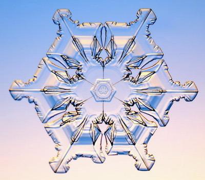 Макромир, Снежинки под микроскопом, форма снежинок