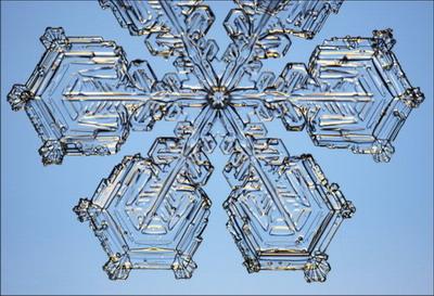 Макромир :: Снежинки под микроскопом
