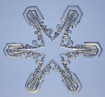 Макромир :: Снежинки под микроскопом фото