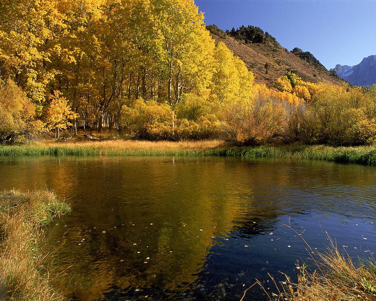 Природа осень фотография 1