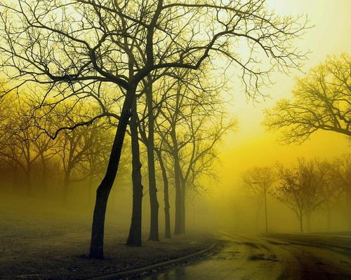 Природа :: Осень фото 38