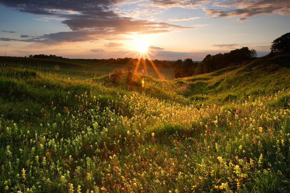 Красивые пейзажи от bart van geffen