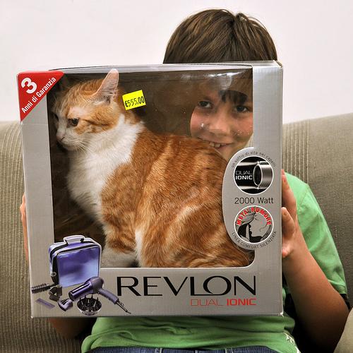 Способы хранения кошек фото 87