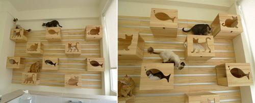 Дизайн квартиры для кошек фото 3