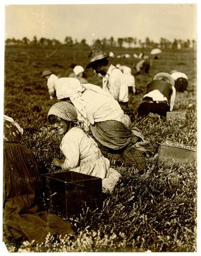 Детский труд фото 10