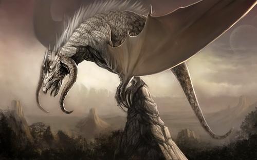 Драконы фото 4