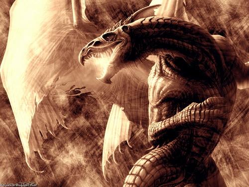 Драконы фото 23
