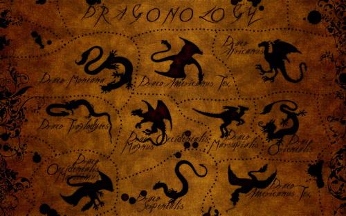 Драконы фото 30