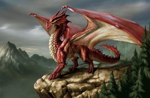 Драконы фото 40