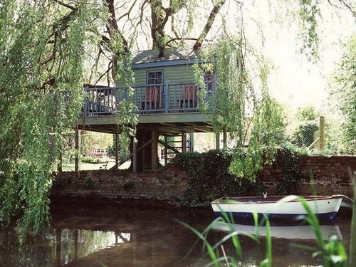 Дома на деревьях фото 2