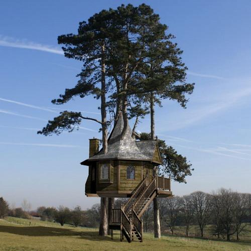 Дома на деревьях фото 10