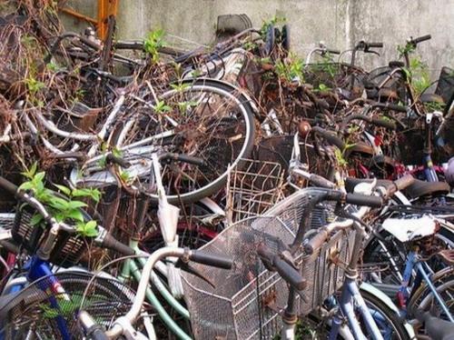Кладбище велосипедов? фото 0
