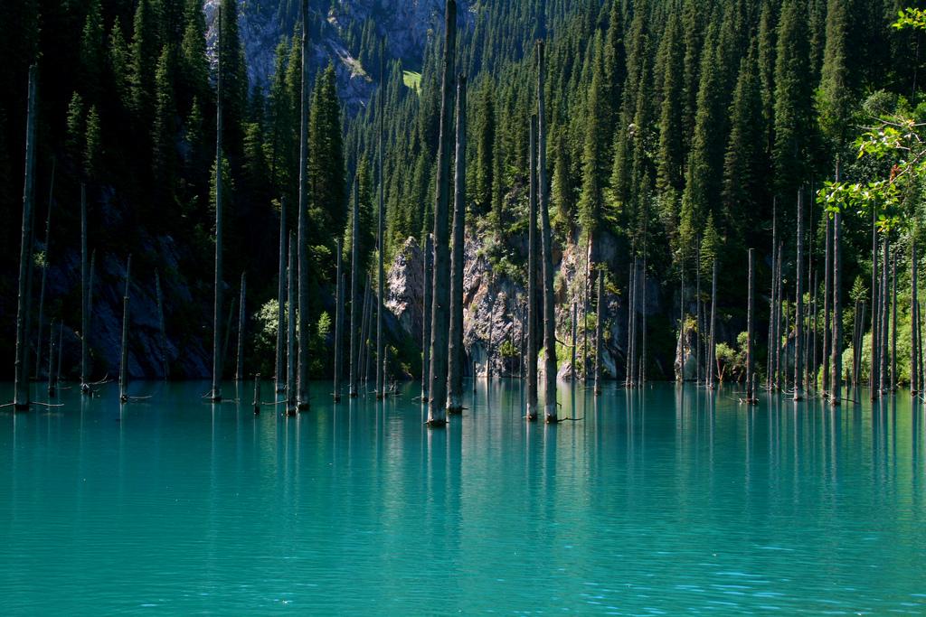 показать своих необыкновенный казахстан природа фото посещения