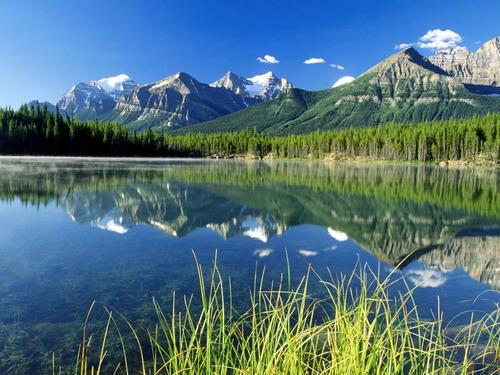 Красивая природа отличные фотографии