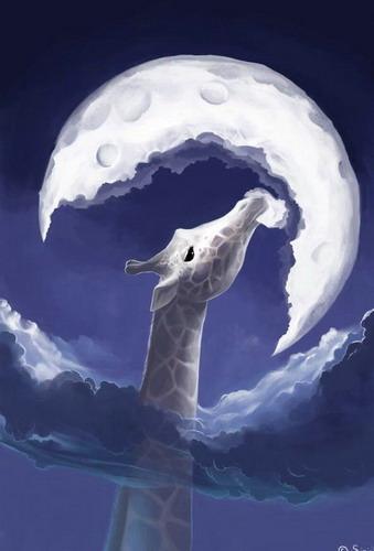 Веселые картинки вся правда о луне