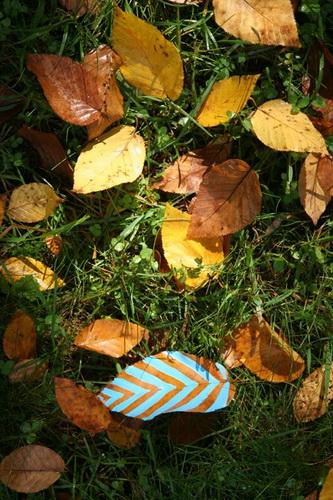 Рисунки на листьях и камнях фото 7