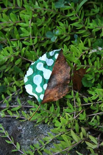 Рисунки на листьях и камнях фото 32
