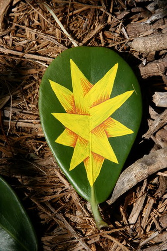 Рисунки на листьях и камнях фото 40