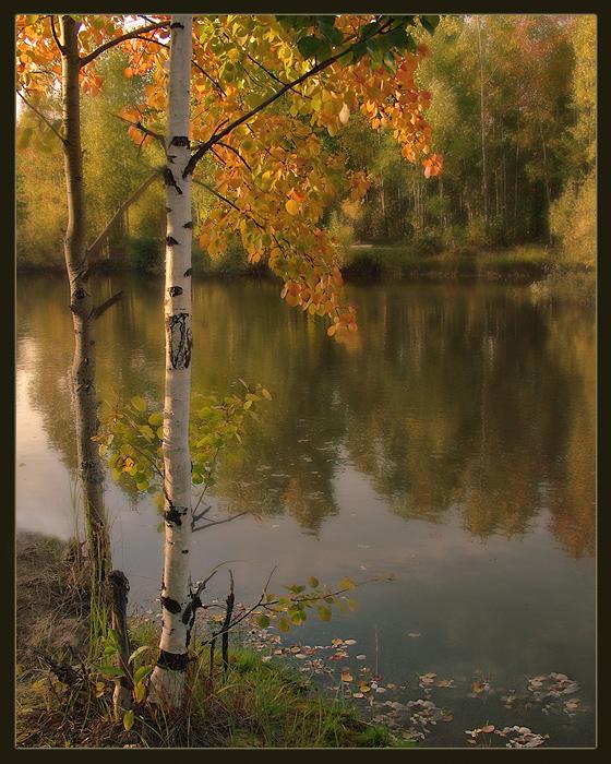 http://basik.ru/images/nature_landscape_3/45_nature.jpg