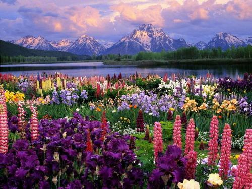 фото красивых пейзажей.
