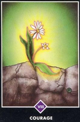 Маленькие медитации от ОШО :: Карты Ошо