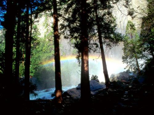 Природа :: Радуга фото 6