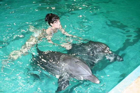 Животный мир :: Заплыв с дельфинами фото 3.