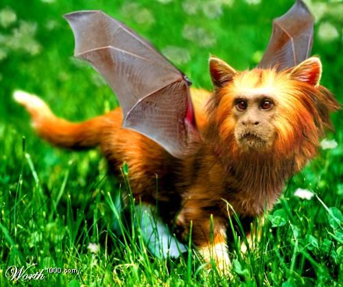 Фотошоп нереальные животные фото 9