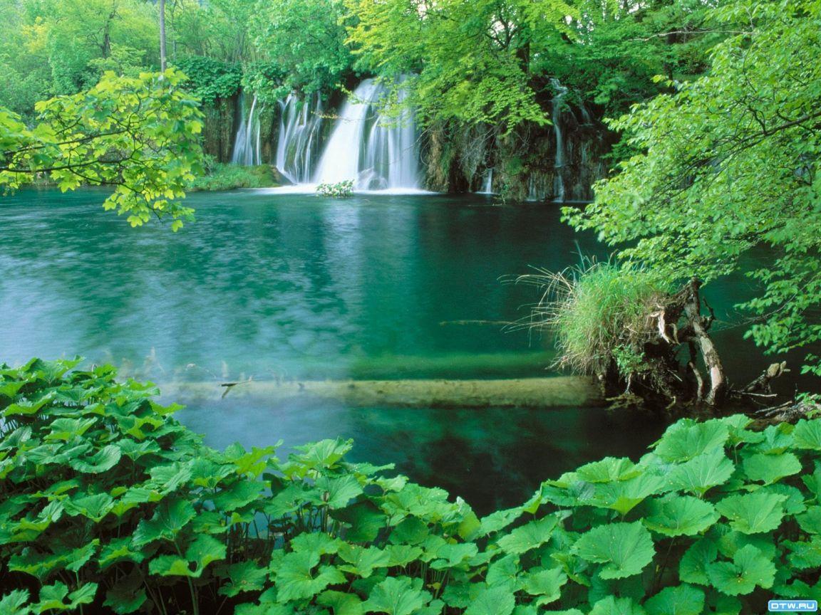Природа вода фотография 2