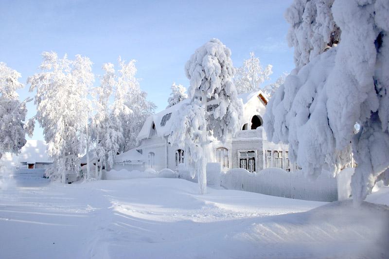 Природа зима фотография 2