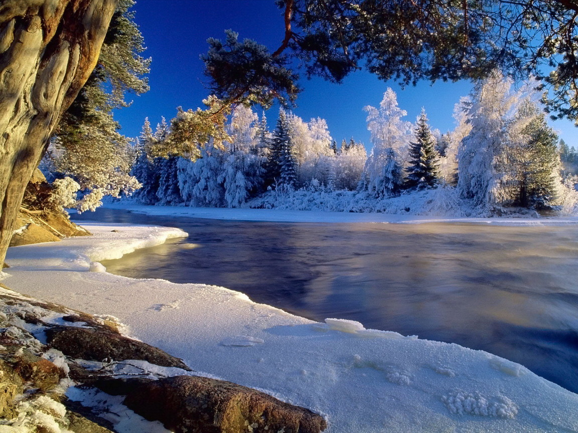 Basik ru обои на рабочий стол зима
