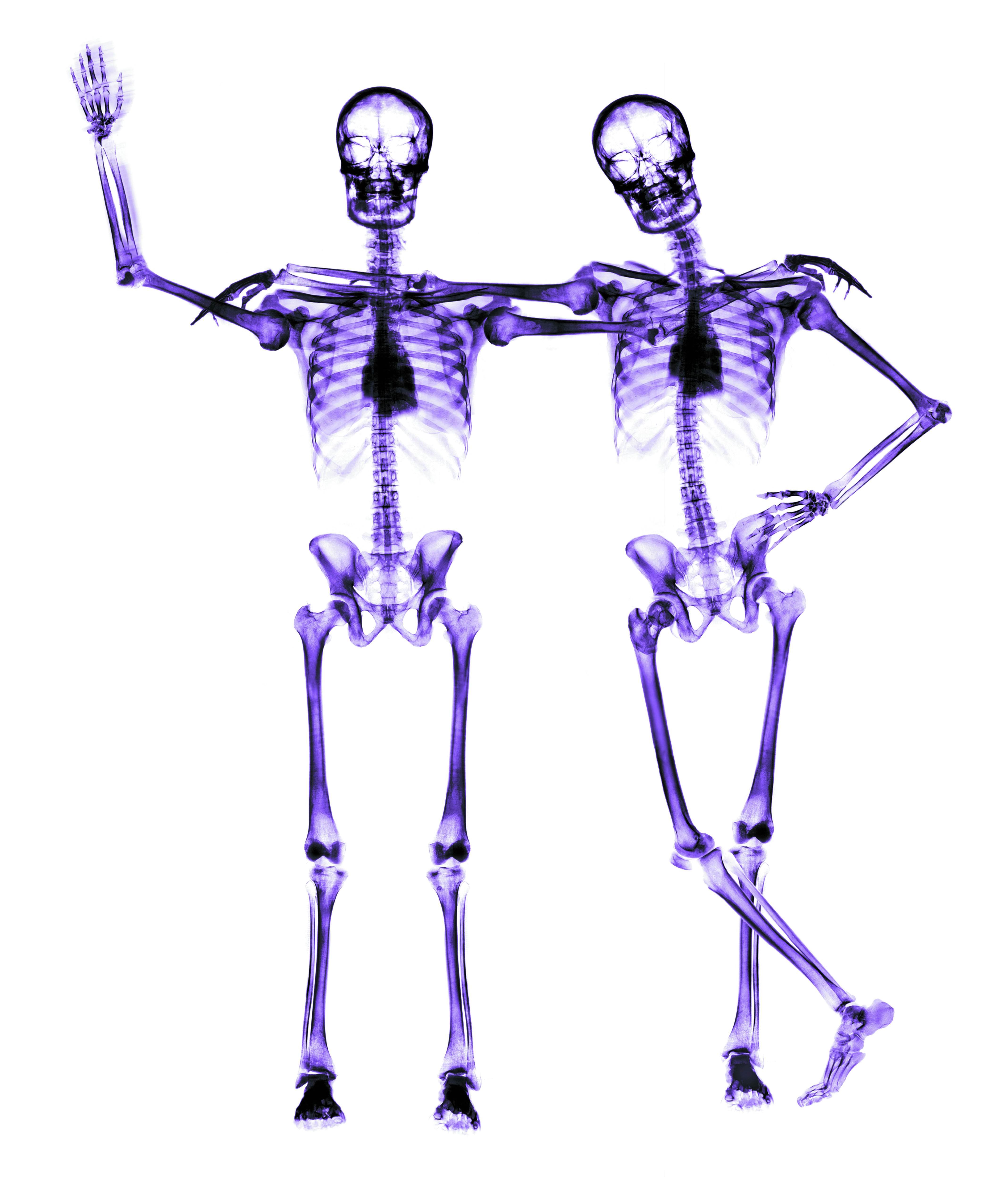 Прикольное скелет картинка, дню